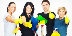 Professional domestic cleaning services in South Africa