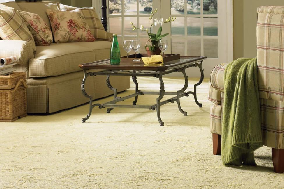Carpet Cleaning Kempton Park Cleanserv Sa S Leading